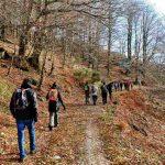 Trekking Laceno