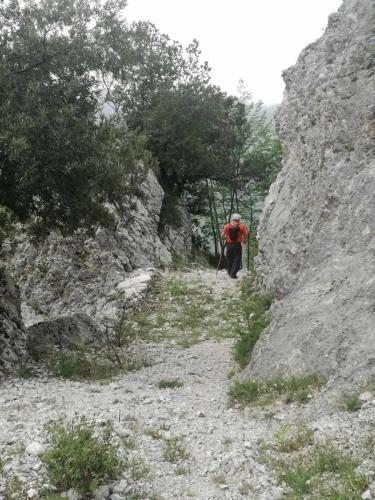Sentiero6-e